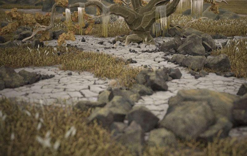 grond,gras,stenen,boom_01