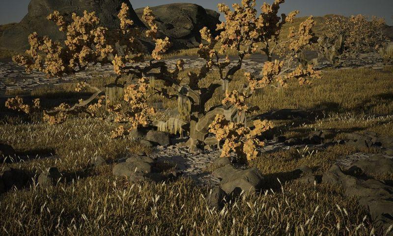 grond,gras,stenen,boom_03
